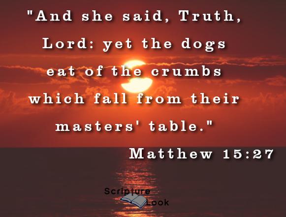 Crumbs of Mercy