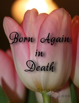 Born Again in Death