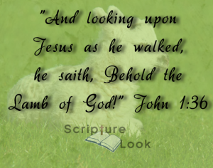 The blood of Jesus to be shed thinking of John 1:36