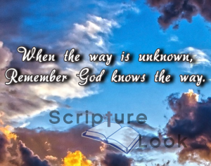 When the way is unknowns, remember God knows the way.